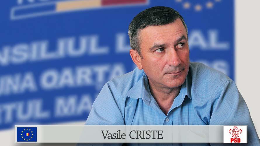 CRISTE Vasile psd1