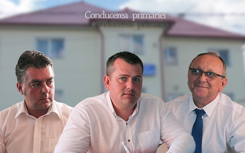 oarta conducere primarie 2016