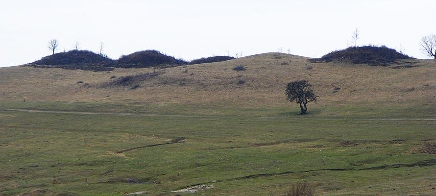 Oarta de Sus-Piramidele Dacilor