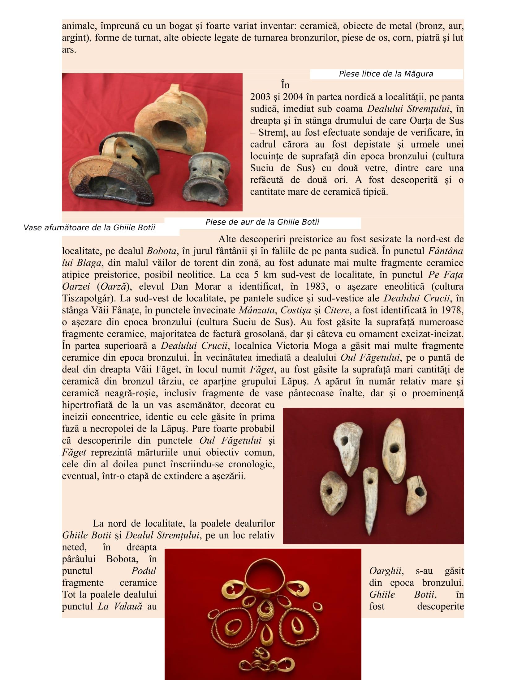 Prezentare situri arheologice din Oarta de Sus-2